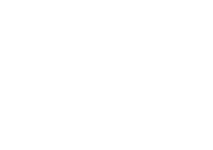EU UK Forum Logo white
